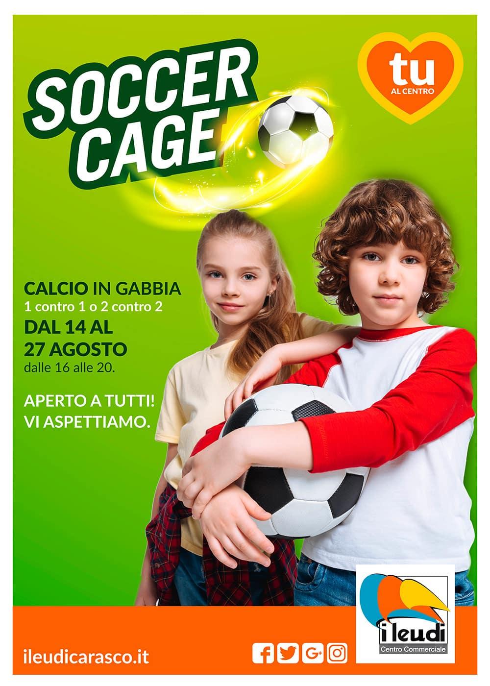 leudi_soccer-cage-web